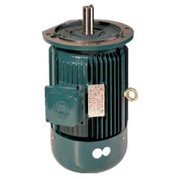 摆线减速机专用配减直联电机