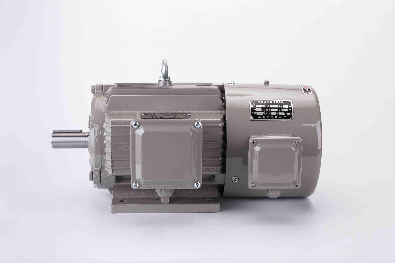 YVF2变频调速三相异步电动机
